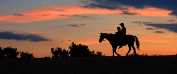 10 consejos para montar a caballo en una ruta